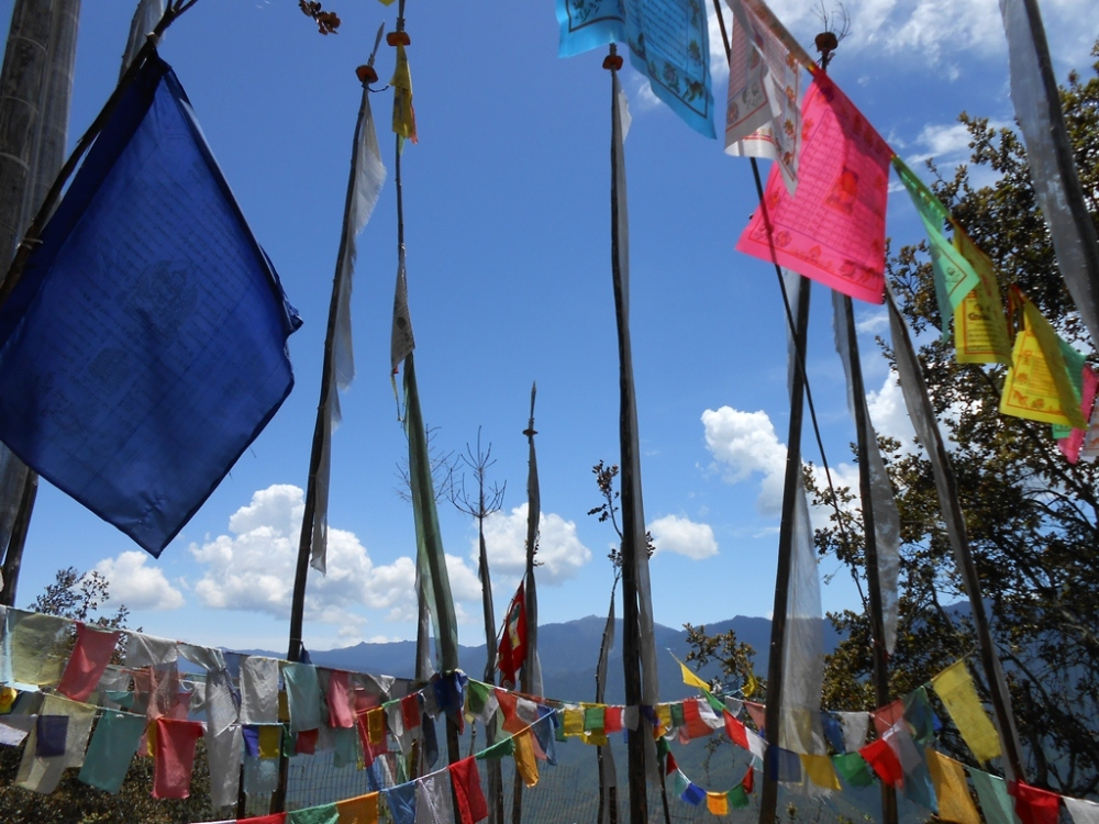Much of the path is dotted with these colorful prayer flags which look splendid with the sky and the pines all around.