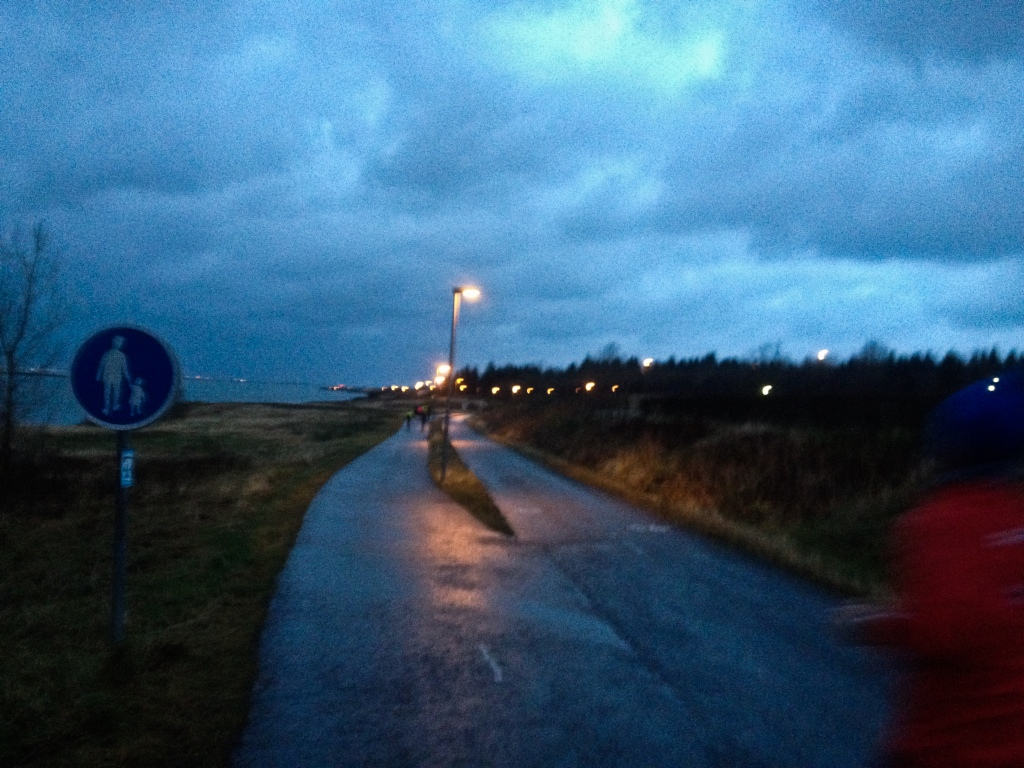 8 am on the trail, Reykjavik Autumn Marathon, 2016
